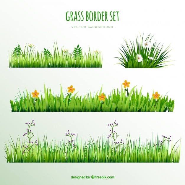 626x626 Vegetable Garden Vectors, Photos And Psd Files Free Download