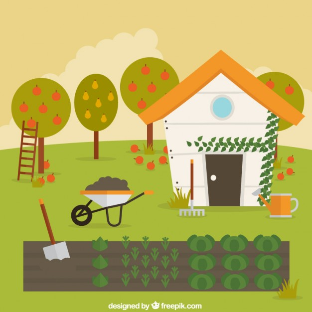626x626 Vegetable Garden Vector Free Download