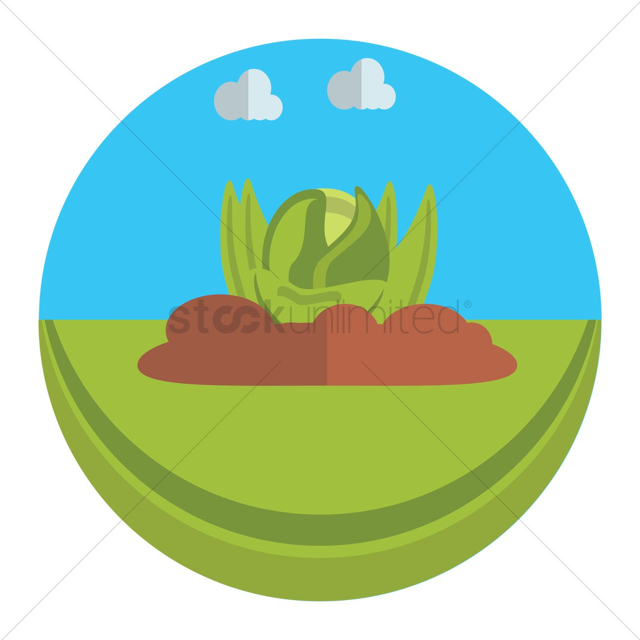 1300x1300 Vegetable Garden Vector Image