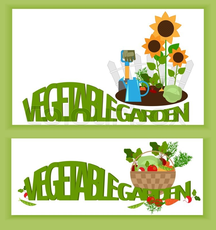 752x800 Banner A Vegetable Garden Vegetables In The Garden, And Text