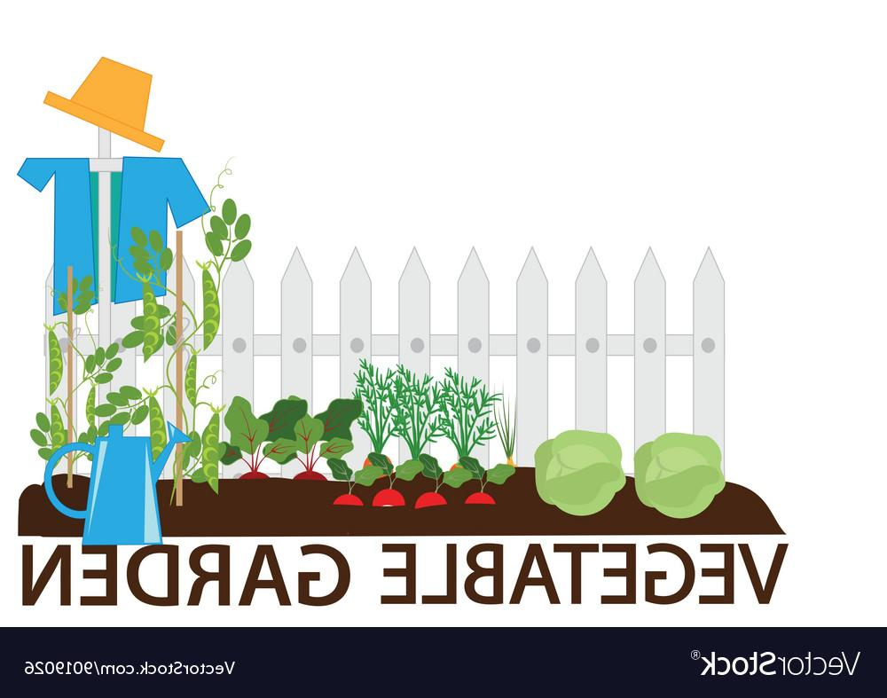 1000x787 Best 15 Vegetable Garden Vector Cdr