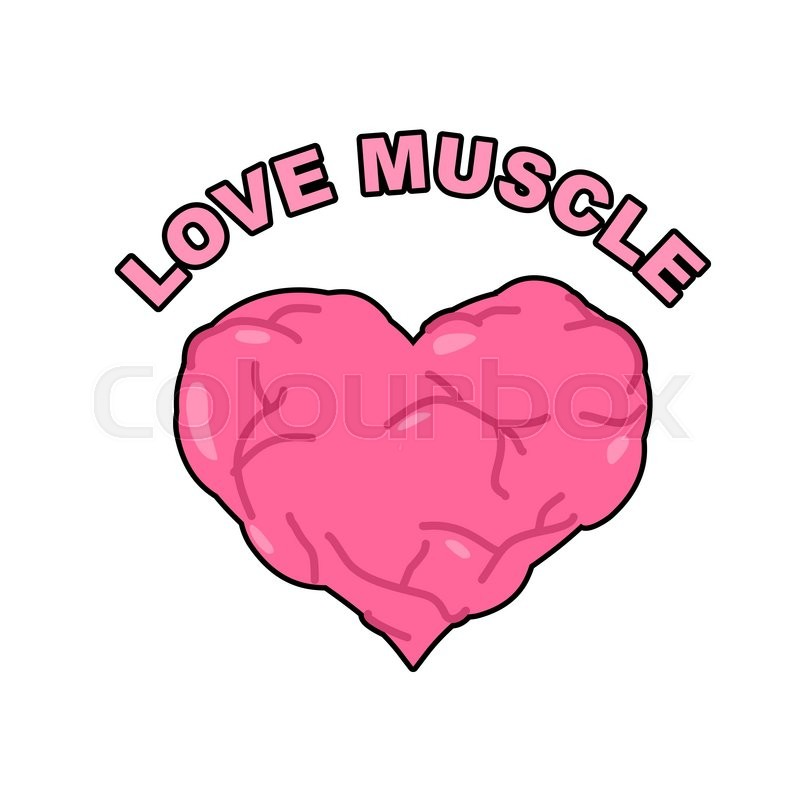 800x800 Love Muscle. Strong Athletic Heart With Muscles And Veins. Vector