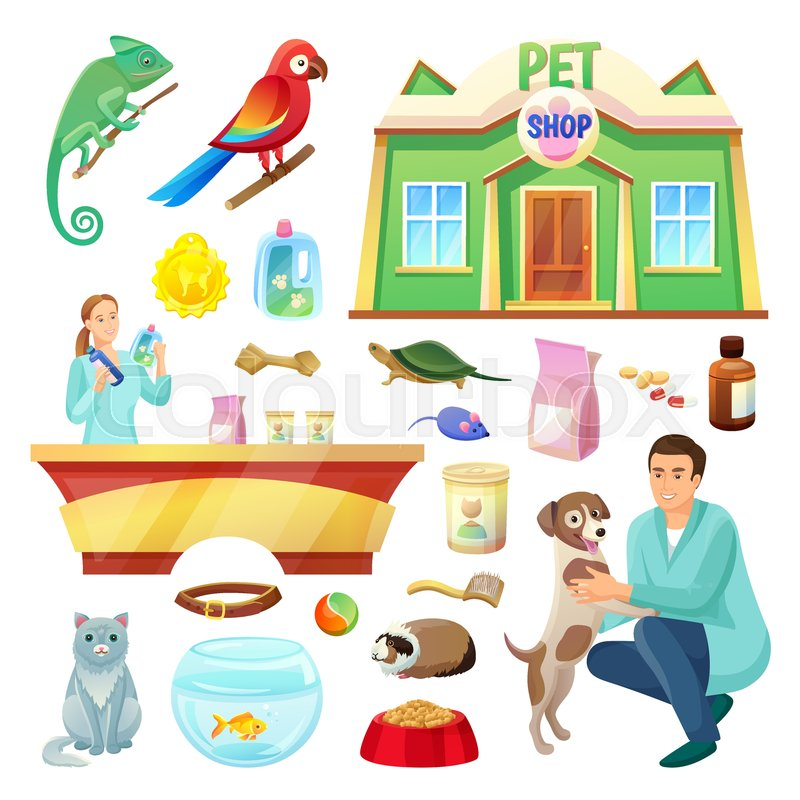 800x800 Pet Shop With Fluffy Cat, Friendly Dog, Exotic Animals, Special