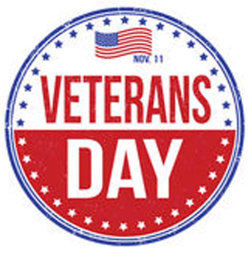 960x972 County Marks Veterans Day In Cooperstown, Oneonta, More
