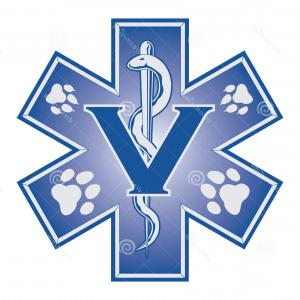 300x300 Medical Symbol Of The Emergency Star Of Life Vector Orangiausa