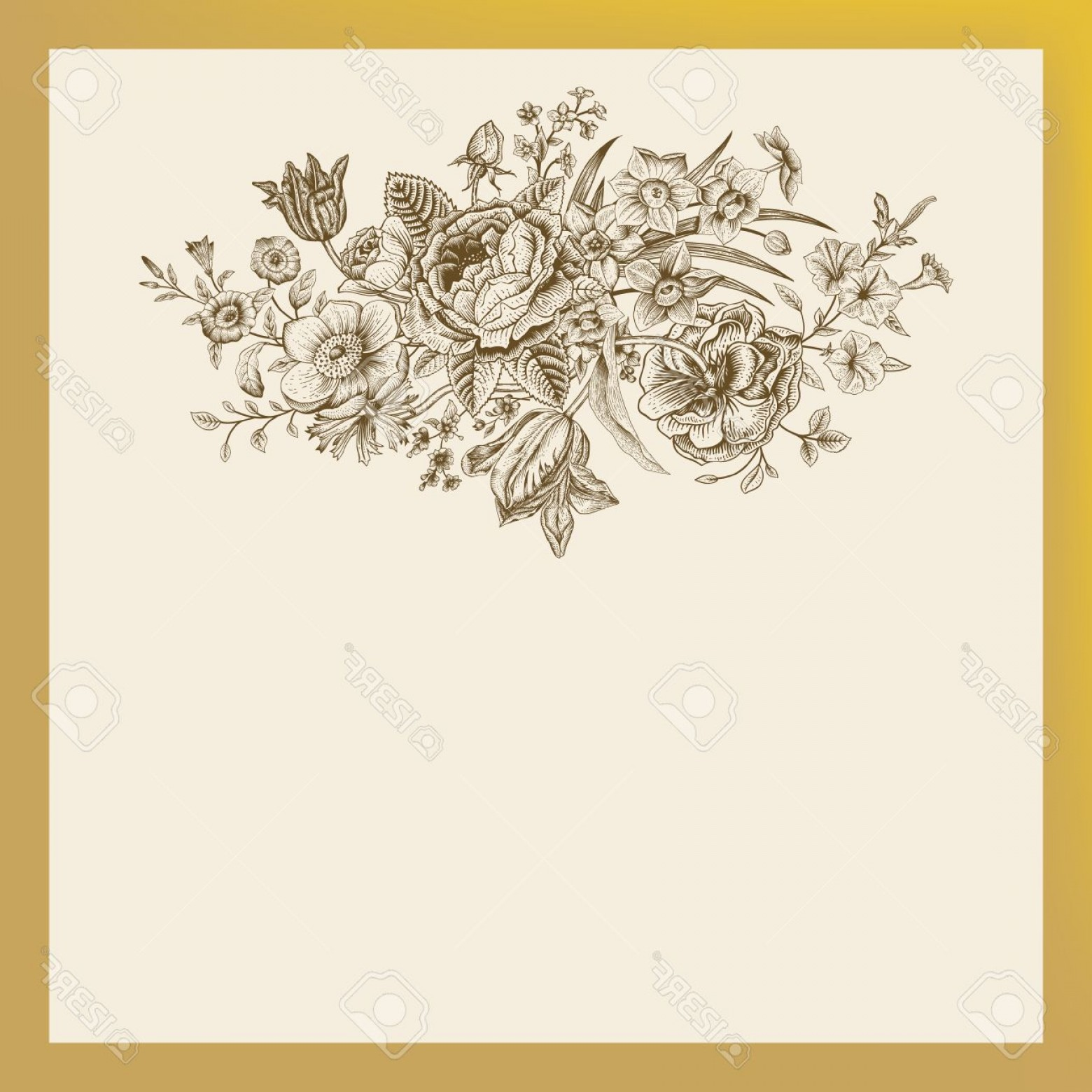 1560x1560 Photostock Vector Vintage Floral Vector Card With Spring Summer
