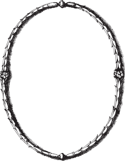 399x513 Download Vector Frame Free Png Transparent Image And Clipart