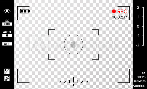500x305 Camera Viewfinder Vector. Photo Or Video Camera Grid With Shooting