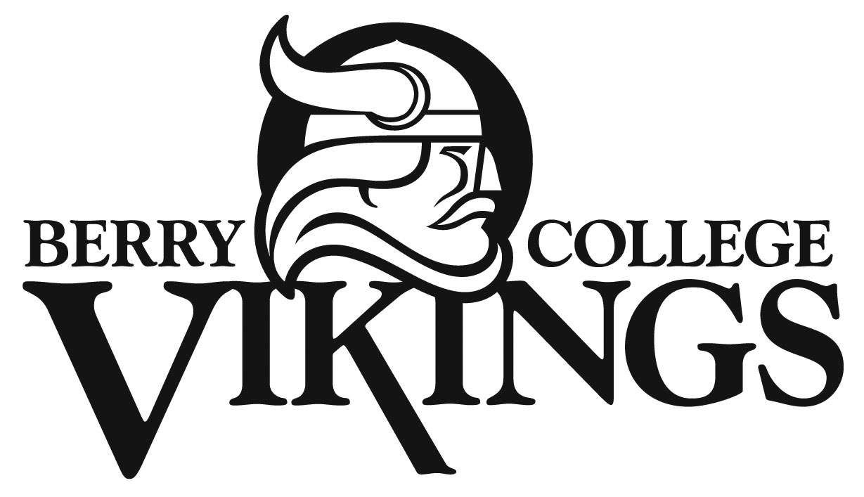 Vikings Logo Vector