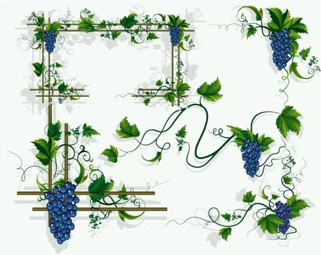 463x368 Vine Border Free Vector Download (6,024 Free Vector) For