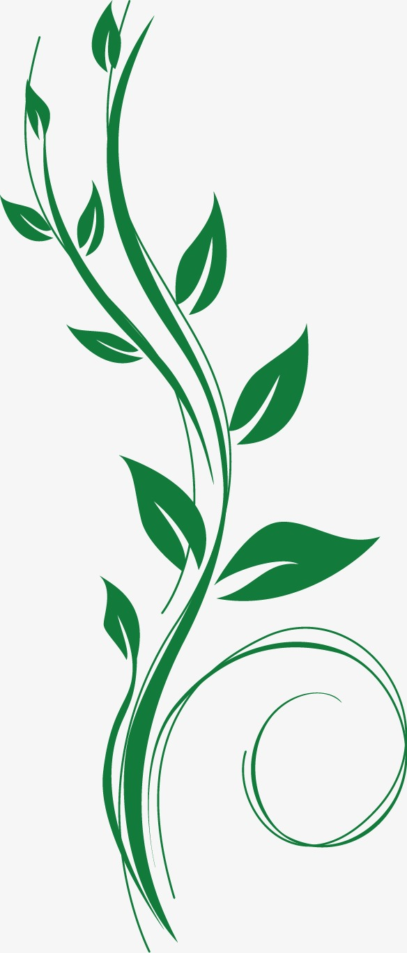 584x1368 Green Vine, Green, Vine Leaf, Green Vector Png And Vector For Free