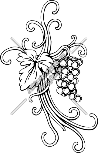 323x500 Grape Vine Clipart And Vectorart Religious