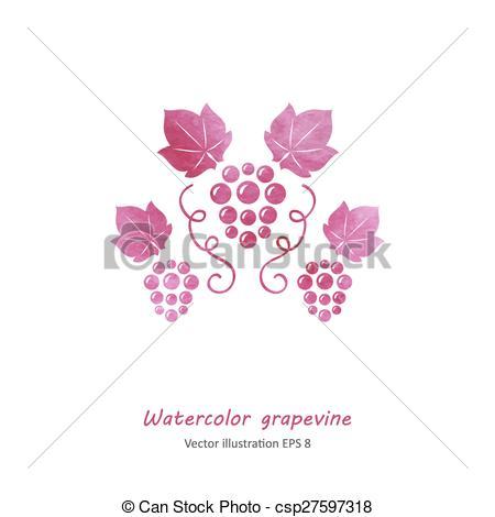 450x470 Watercolor Pink Grape Vine. Watercolor Style Pink Grape... Vector