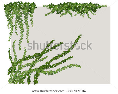 450x358 Drawn Vine Vector Free Collection Download And Share Drawn Vine
