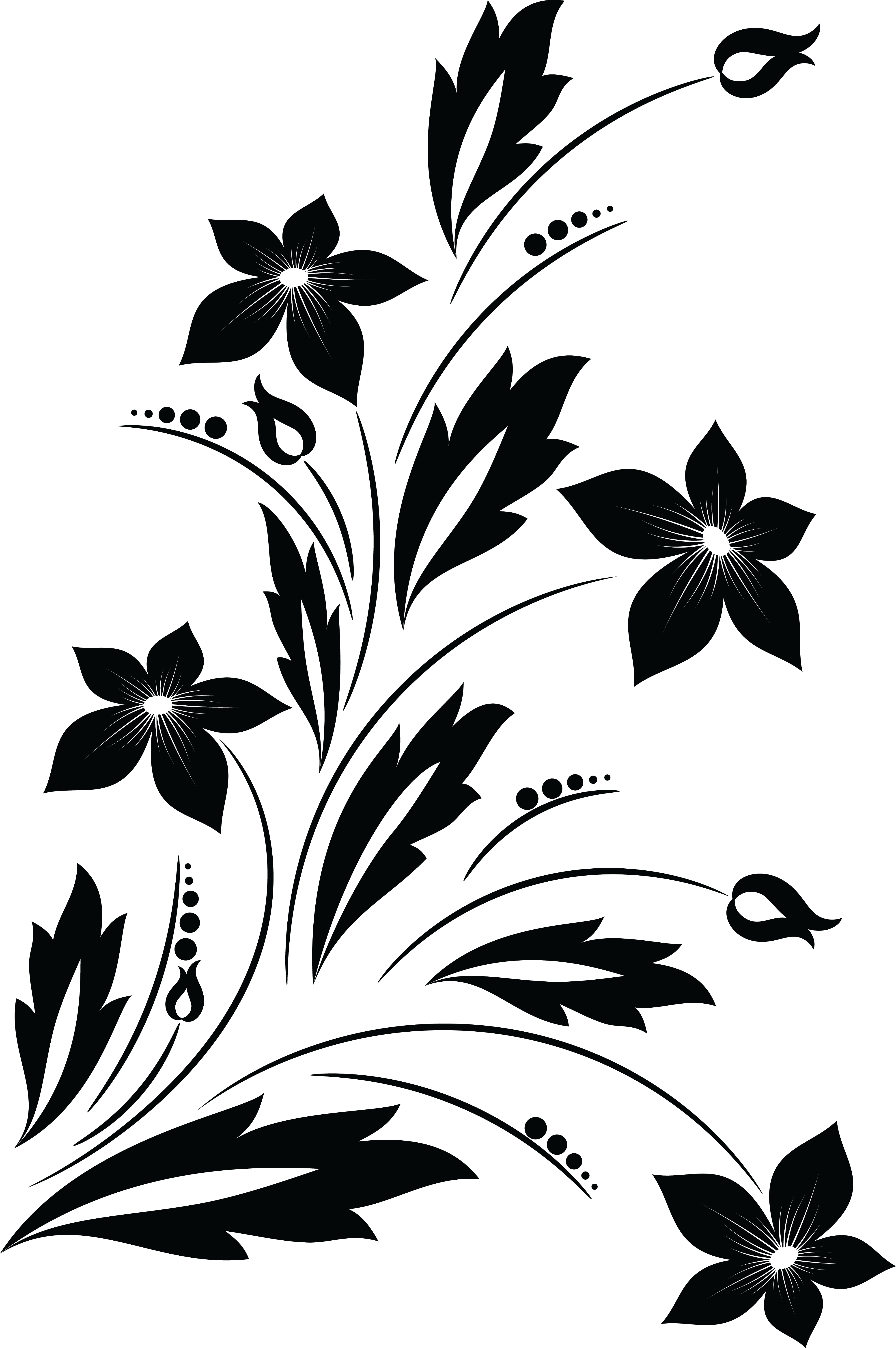 4000x6012 Drawn Vine Flower Png