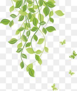 260x306 Green Leaves,leaves,flower Vine,vine,green Vine,fashion,spring