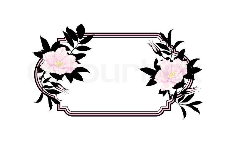 800x487 Vintage Roses Oval Frame Stock Vector Colourbox