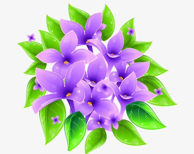 650x518 Violet Flower Vector, Flower Clipart, Violet Flower, Flower Png