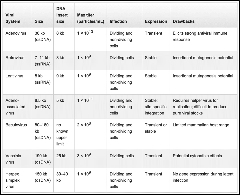 985x801 Comparing Viral Vector Expression Systems