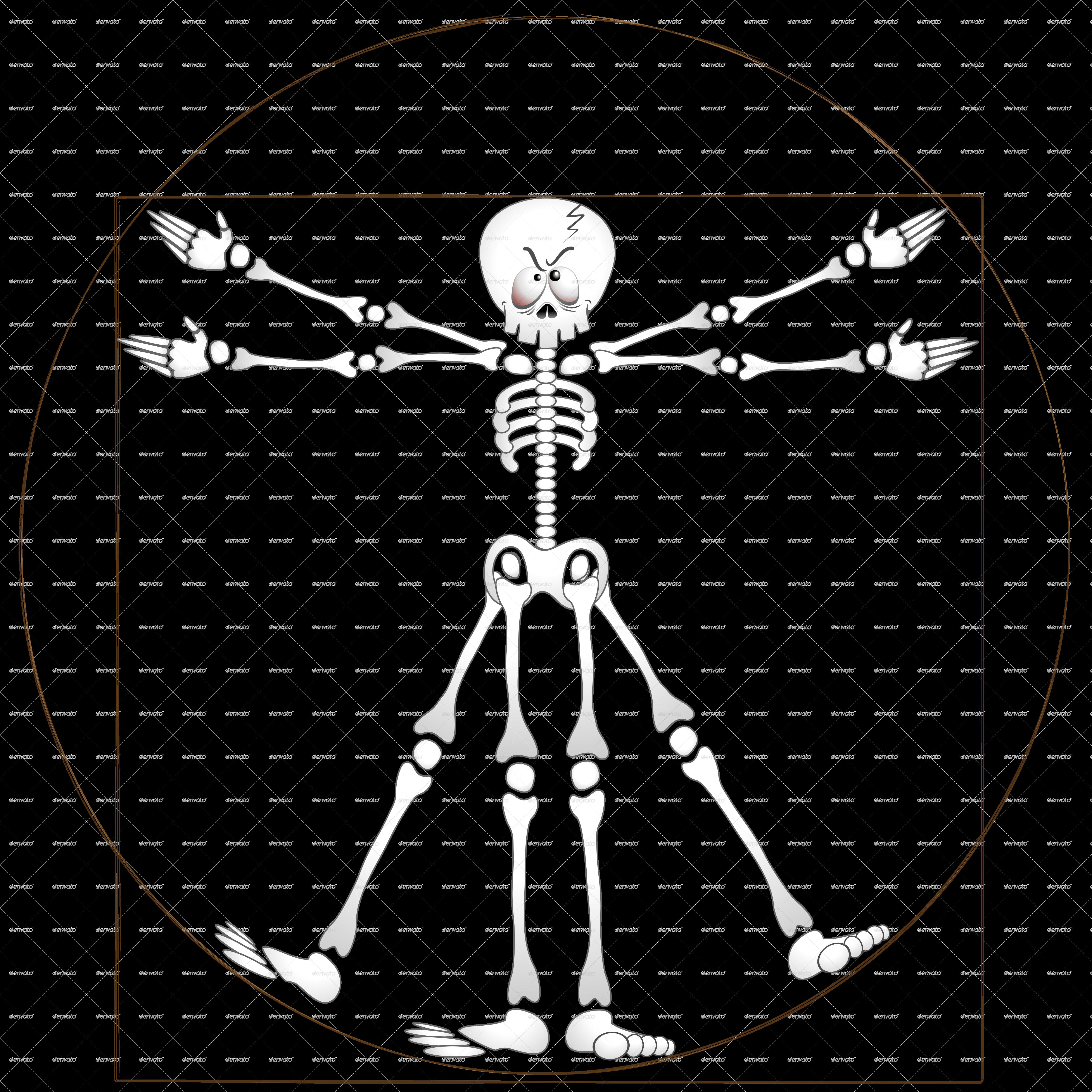 Vitruvian Man Vector Free Download