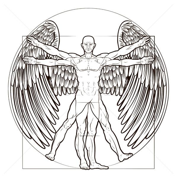 598x600 Vitruvian Man Angel Vector Illustration Christos Georghiou