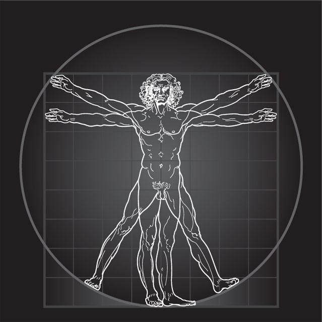 639x639 Vitruvian Man Illustration