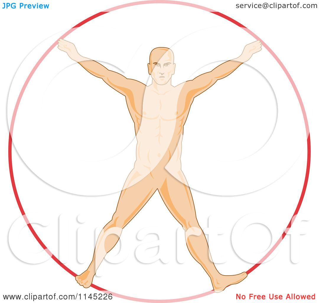 1080x1024 Vitruvian Man Vector Free Download 18995 Infovisual