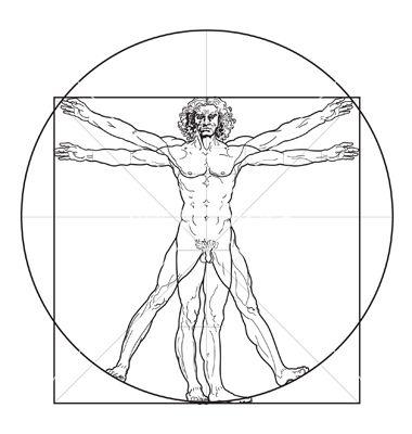 380x400 Vitruvian Man Vector Free Download Davinci Google Search