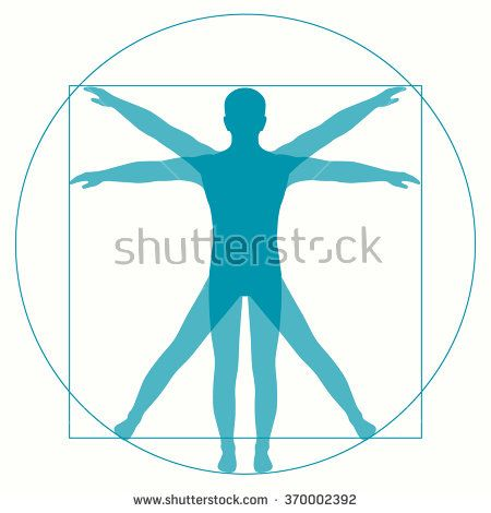 450x470 Vitruvian Man Vector Free Download Leonardo Da Vinci Vetruvian Man