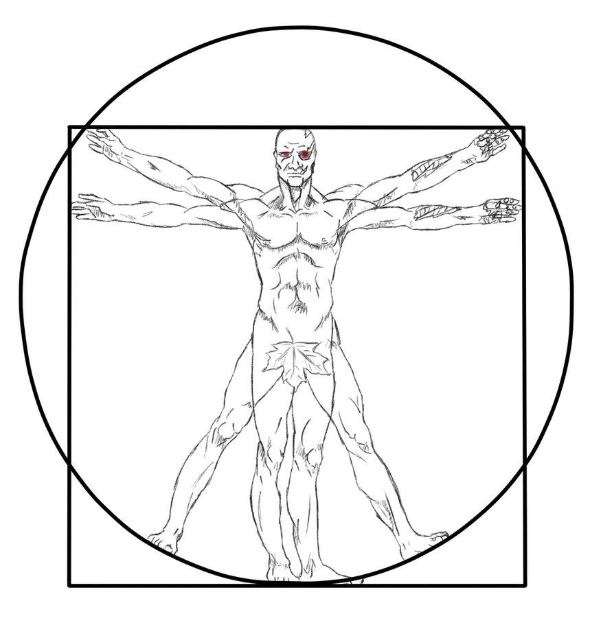 859x930 Vitruvian Man Vector Free Download