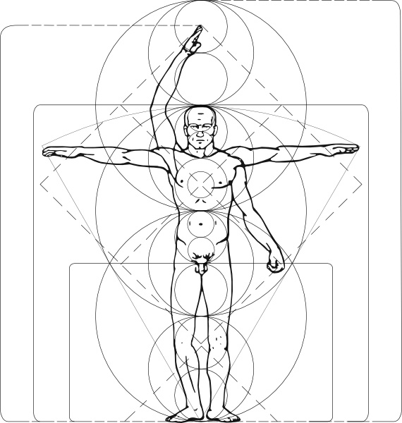 570x600 Vitruvian Man Clip Art Free Vector In Open Office Drawing Svg