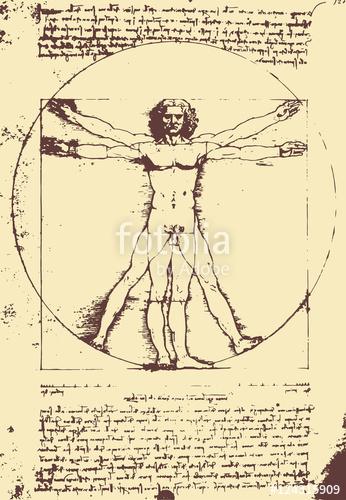 346x500 Vitruvian Man Illustration Leonardo Da Vinci [Vector] Stock