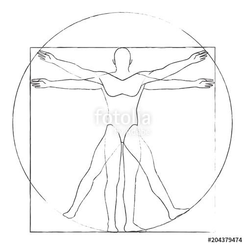 500x500 Vitruvian Man Drawing Vector Stock Image And Royalty Free Vector
