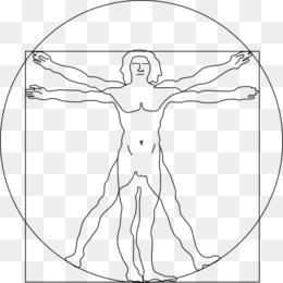 260x260 Free Download Vitruvian Man Computer Icons Proportion Clip Art