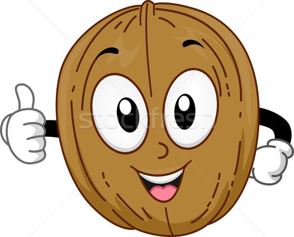 600x484 Mascot Walnut Vector Illustration Lenm ( 6519389) Stockfresh