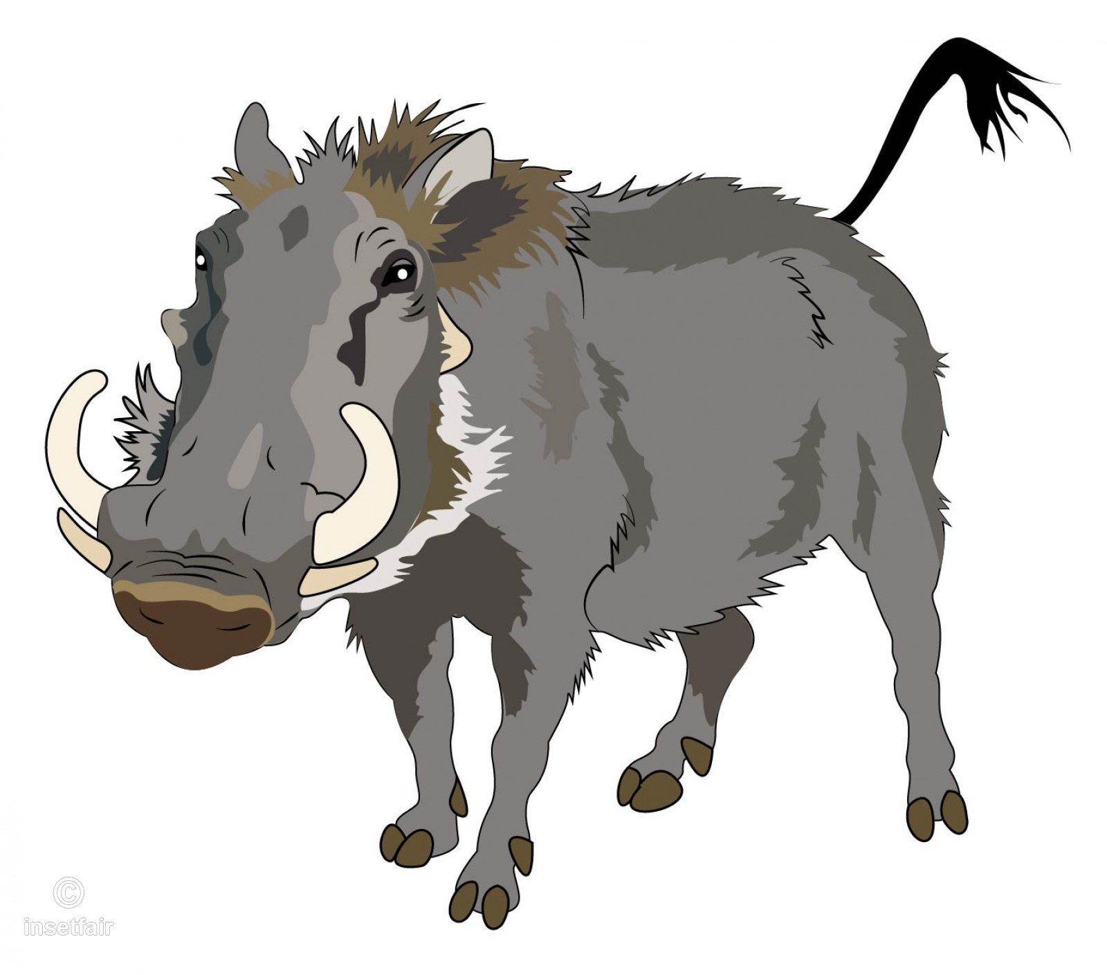 1600x1409 Warthog Wild Animal Vector Illustration