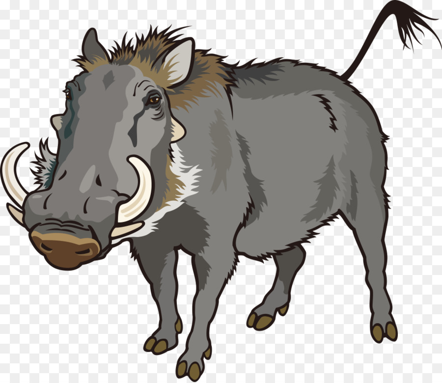 900x780 Common Warthog Can Stock Photo Clip Art
