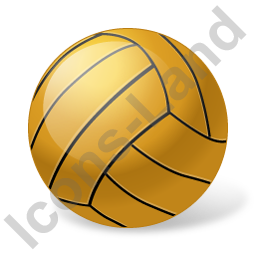 256x256 Vector Volleyball