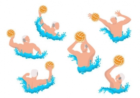 285x200 Water Polo Vector Free Vector Graphic Art Free Download (Found