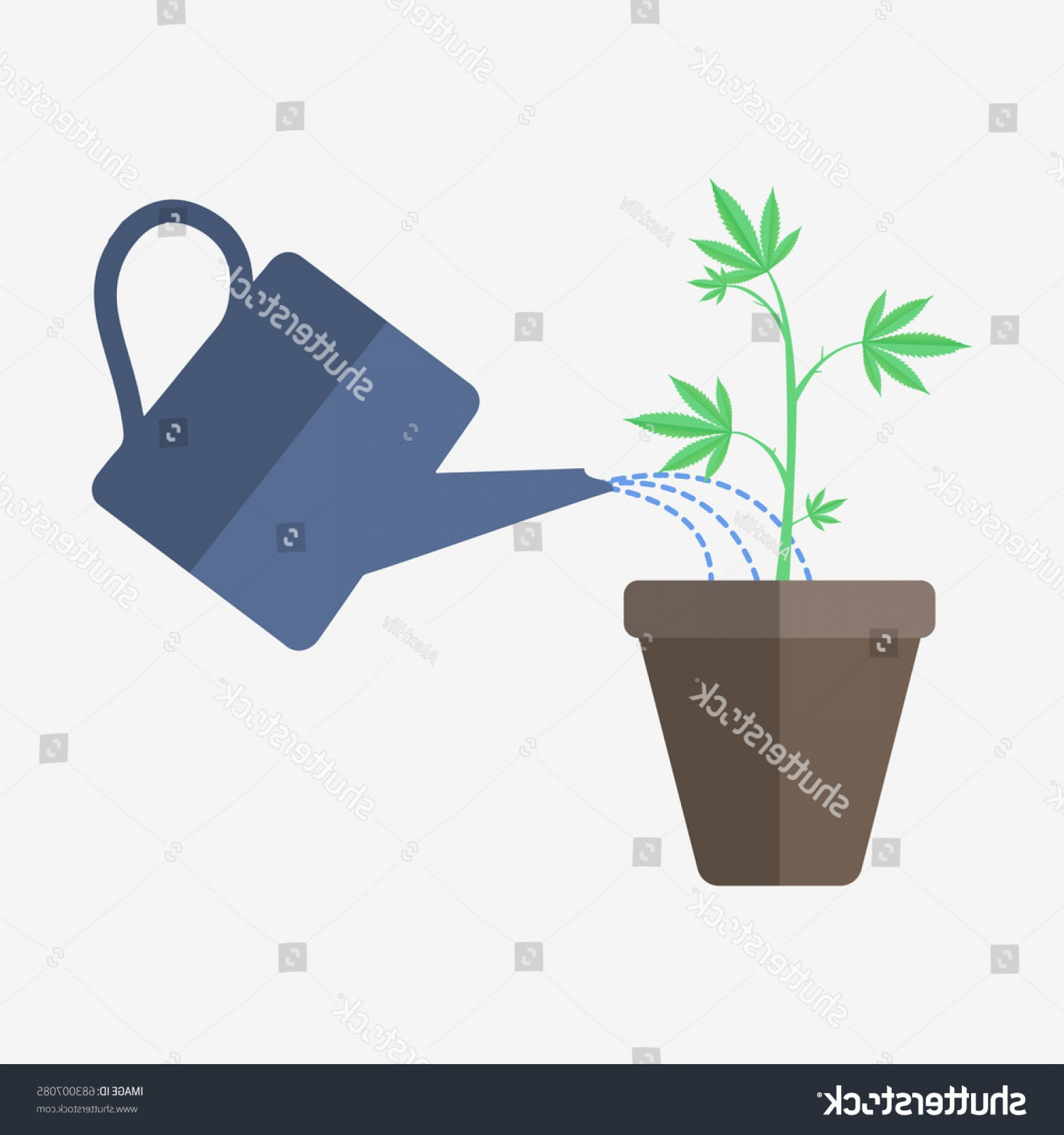 1800x1920 Cannabis Pot Watering Can Vector Illustration Shopatcloth