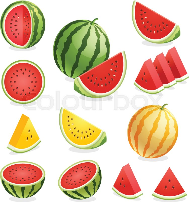 751x800 Watermelon. Vector Illustration. Stock Vector Colourbox