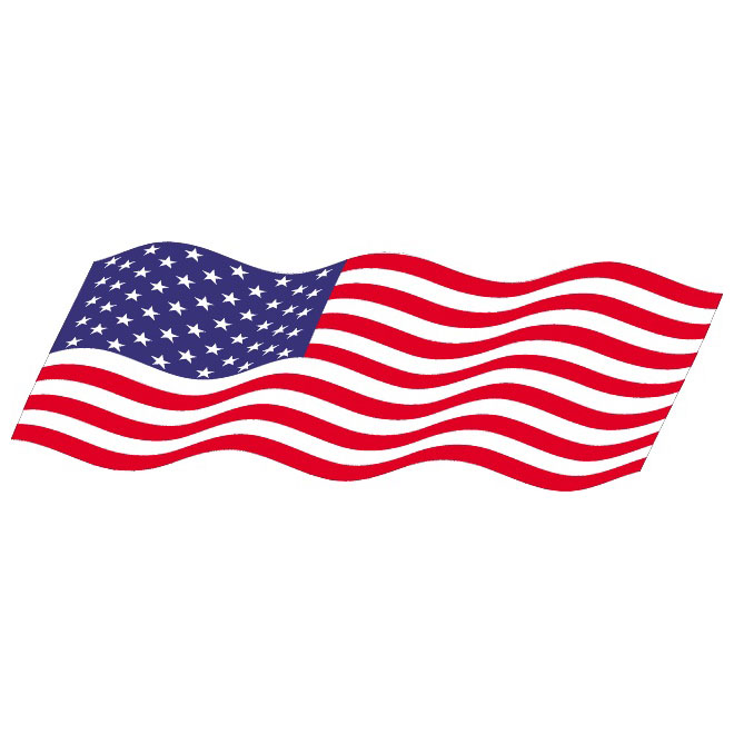 660x660 Vector Wavy Flag Of Usa