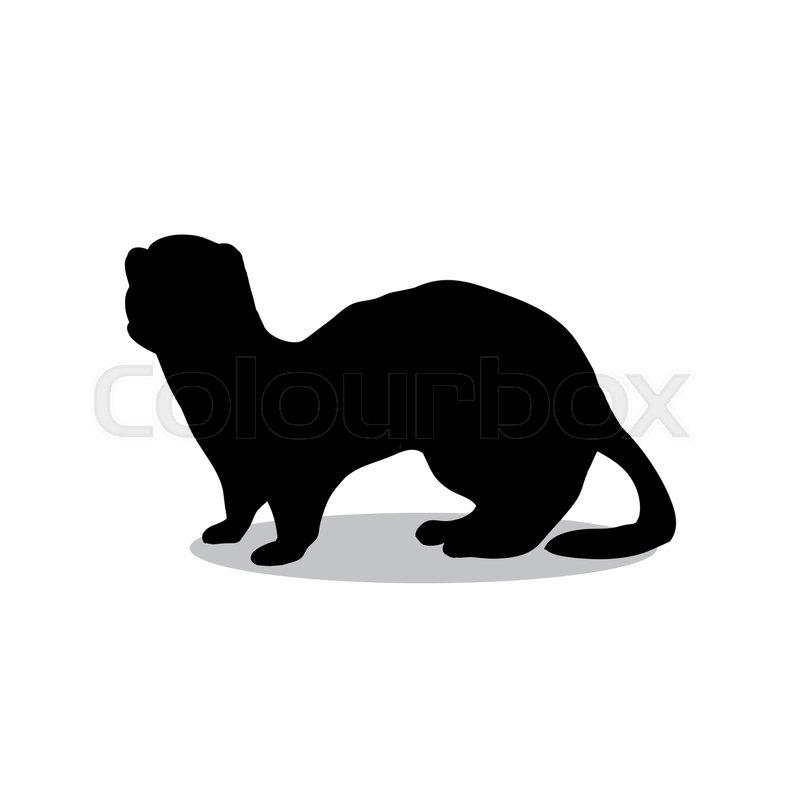 800x800 Ferret Weasel Ermine Mammal Black Silhouette Animal. Vector
