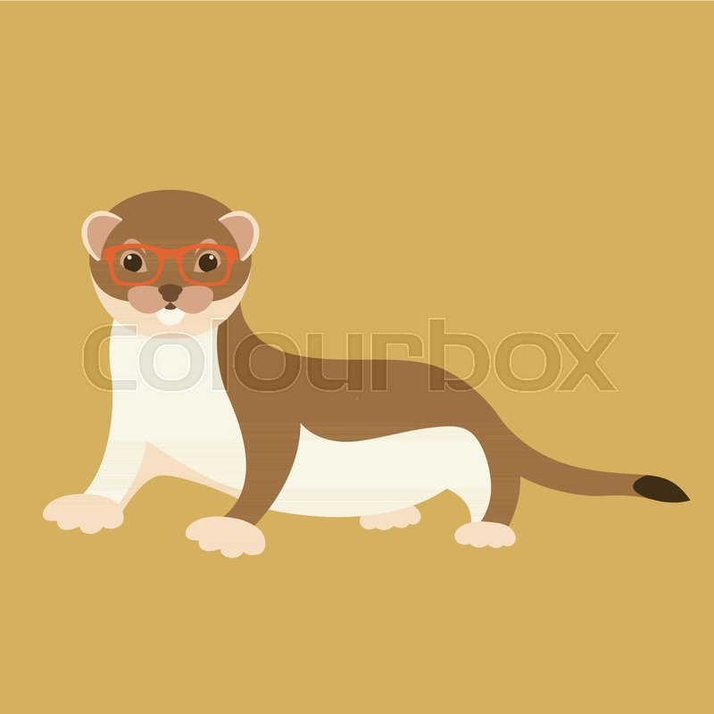 800x800 Weasel In Glasses Vector Illustration Flat Style Front Side