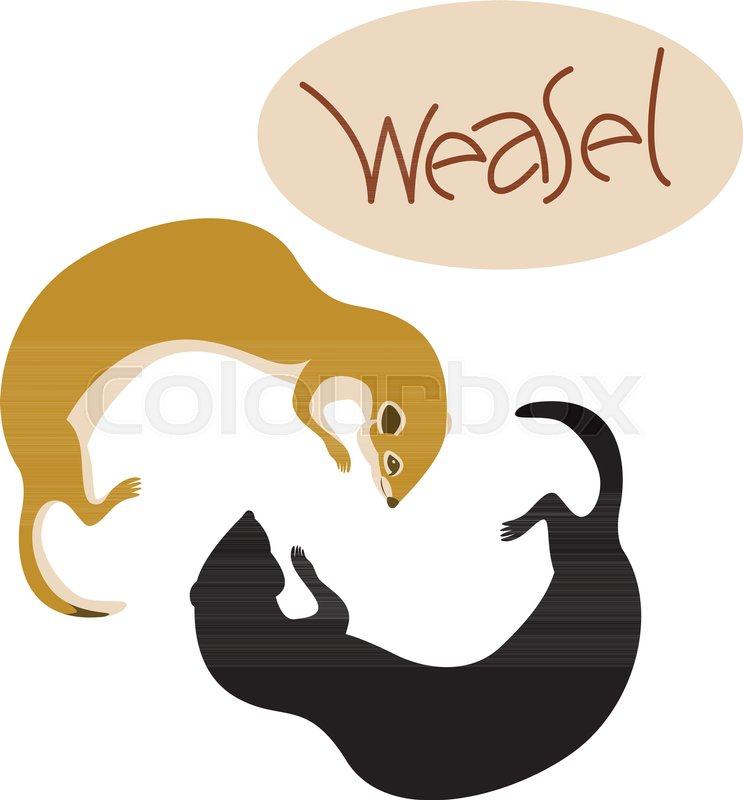 743x800 Weasel Vector Illustration Flat Style Profile Side Black