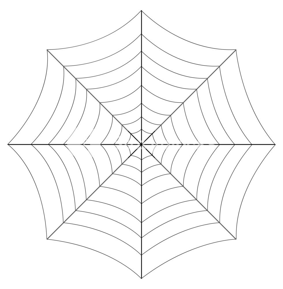 981x1000 Spider Web Vector Art Design Royalty Free Stock Image
