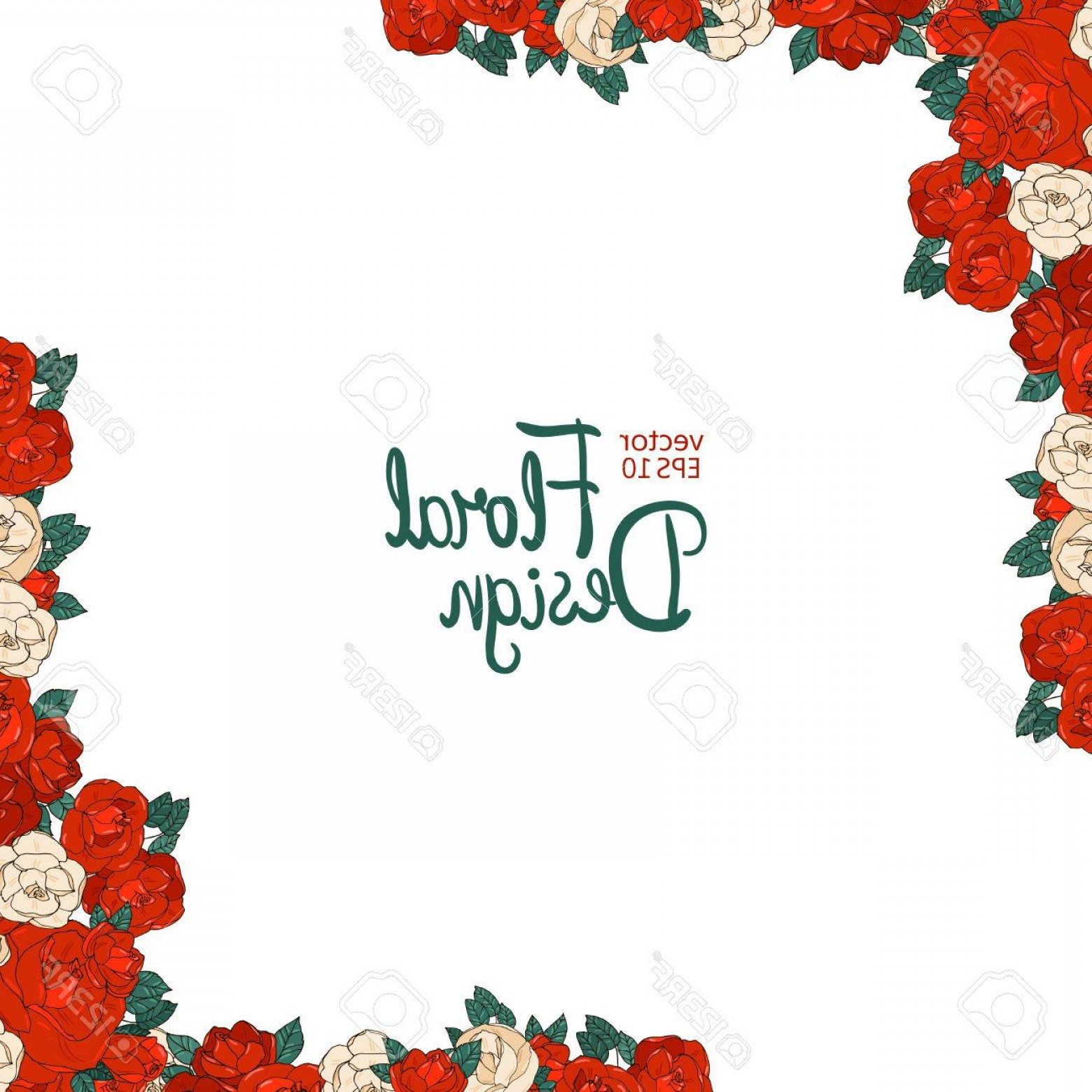 1560x1560 Photostock Vector Vintage Wedding Border With Beautiful Red Roses