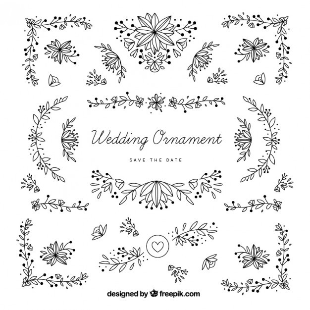 626x626 Ai] Hand Drawn Wedding Ornaments With Leaves Vector Free Download