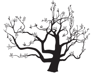 317x250 Japanese Magnolia Tree Vector Drawing