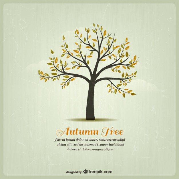 626x626 Autumn Tree Template Vector Free Download